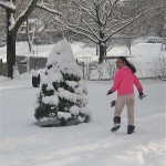 Natural Decoration…Snow!