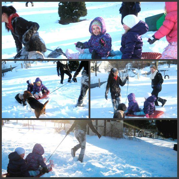 Frozen sled