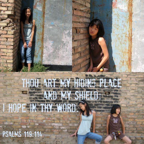 Ps 119-114 hiding place