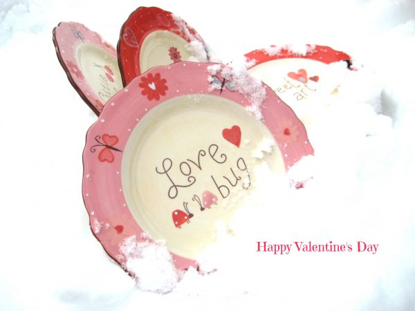 love bug plate val day