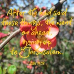 Sabbath Words…going up to Jerusalem