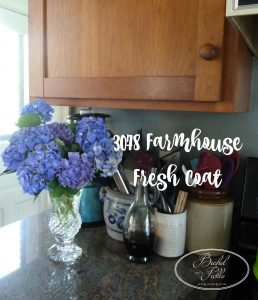 3078 Farmhouse Kitchen Paint Job
