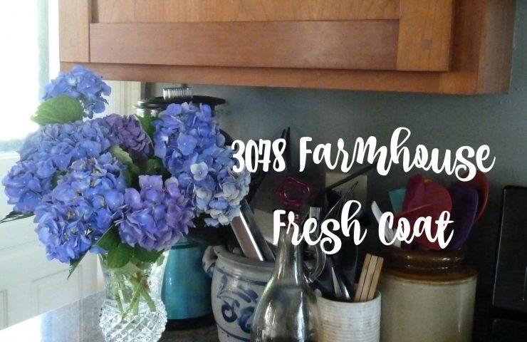 3078 Farmhouse Kitchen Paint Job