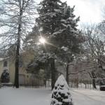 Chasing Away Winter Blues
