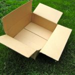 not cardboard hope