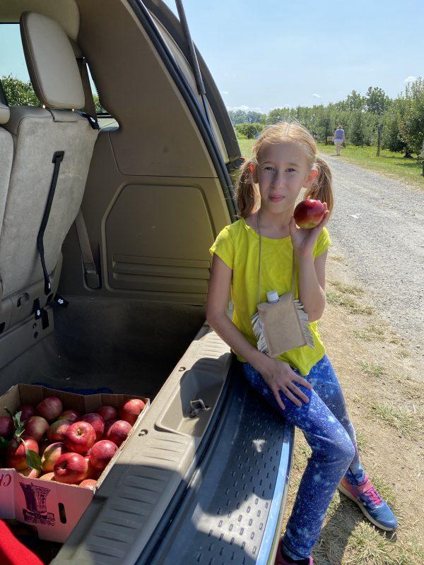 Autumn Apple Picking