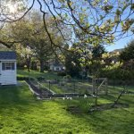 Starting the Organic Garden