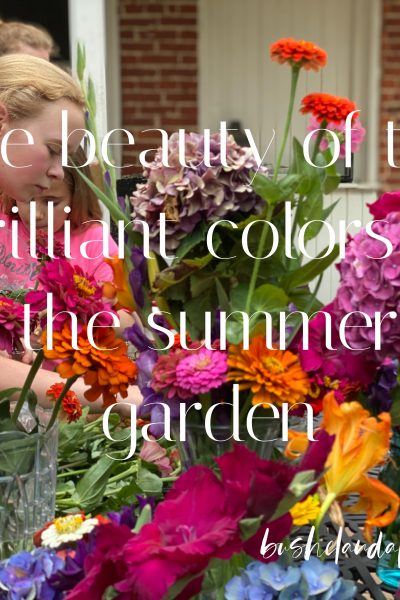 two people arranging arranging the beautiful colors of summer garden outside on the patio