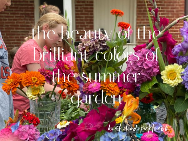 This image has an empty alt attribute; its file name is beautiful-colors-of-summer-garden-600x450.jpg