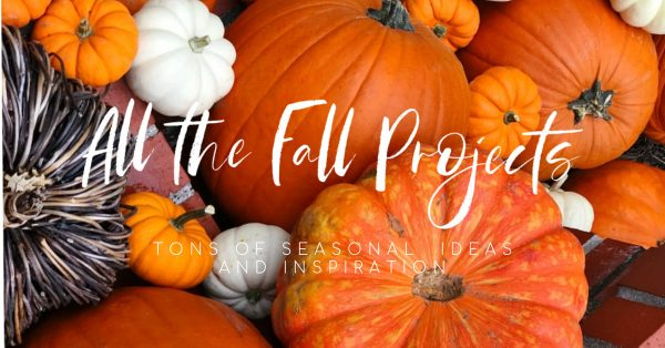 All the Fall Projects